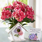 Bird House of Blooms with Grandma Music Box