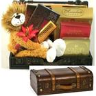 Go Wild Leo the Lion Stuffed Animal and Chocolates Gift Trunk