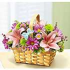 Spring Inspiration Flower Basket