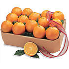 All-Time Favorite Navel Oranges