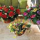 Pre-Lit Summer Hanging Basket