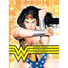Wonder Woman - Amazon Hero Icon Graphics Book