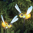 Bee Solar Garden Lights