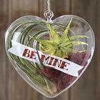 Deluxe Be Mine Heart Shaped Terrarium