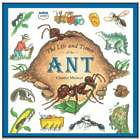 The Life and Times of the Ant Book