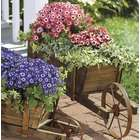Large Wooden Wheelbarrow Planter with Functional Wheel