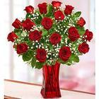 Blooming Love 12 Premium Red Roses in Red Vase