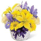 Spirit of Spring Floral Bouquet Basket