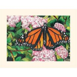 Wisconsin Butterfly Note Cards