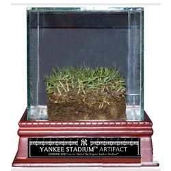Authentic Yankee Stadium Freeze Dried Grass Display