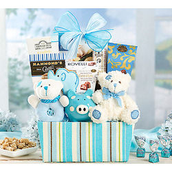 Baby Boy Assortment Gift Basket