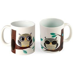 Rise and Shine Magic Owl Mug