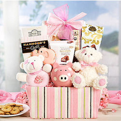 Baby Girl Assortment Gift Basket
