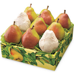 Summertime Royal Riviera Pears