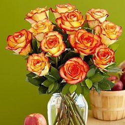 One Dozen Sunset Roses