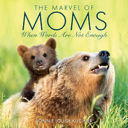 The Marvel of Moms Book