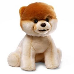 Boo the World's Cutest Dog Stuffed Animal