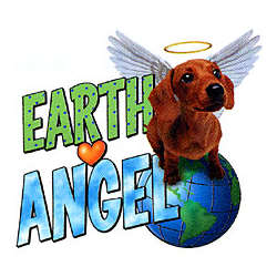 Earth Angel Dachshund T-Shirt