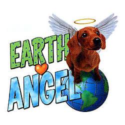 Earth Angel Dachshund T-Shirt