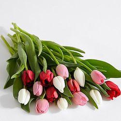 15 Sweetheart Tulips Bouquet