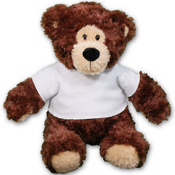 Personalized Anniversary Teddy Bear