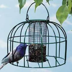 Birdfeeder with Protective Cage