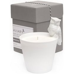 Soy Aviary Owl Candle