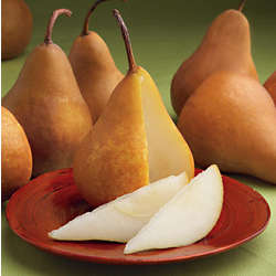 7 Crunchy Bosc Pears