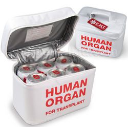 Human Organ Lunch Tote