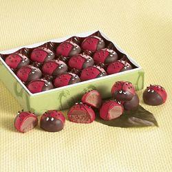 12 Ladybug Truffles Gift Box