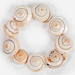 Seashell Bracelet Craft Kit