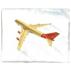 Passenger Plane Personalized Art Print