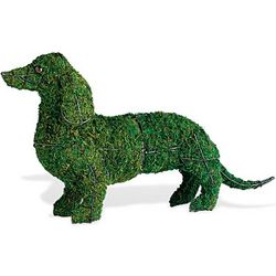"13"" Dachshund Topiary Frame"