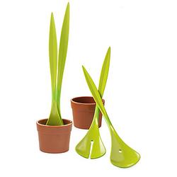 Salad Plant
