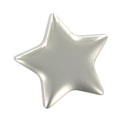 Personalized Shiny Silver Star Magnet