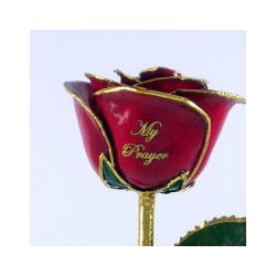 Spiritual Rose