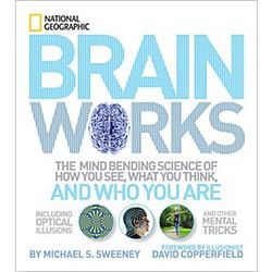 Brainworks Book