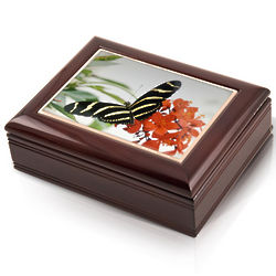Zebra Longwing Butterfly Musical Jewelry Box
