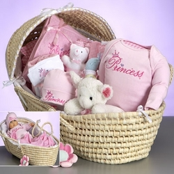 Baby Deluxe Moses Princess Gift Basket