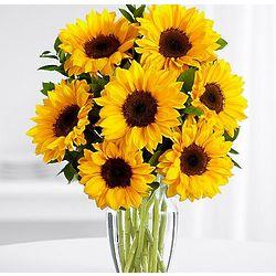 Sunflower Radiance Bouquet