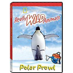 Really Wild Animals Polar Prowl DVD