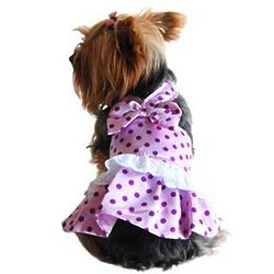 Polka Dot Lavender Dog Dress