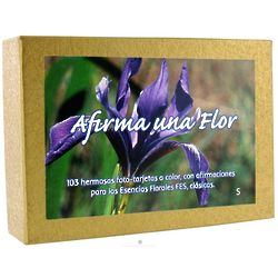 Spanish Affirmation Flower Greeting Cards