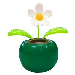 Solar Motion Flower