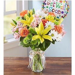 Fields of Europe Get Well Large Bouquet