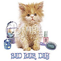 Bad Hair Day Kitty T-Shirt
