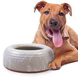 Heavyweight Splash-Free Pottery Pet Bowl