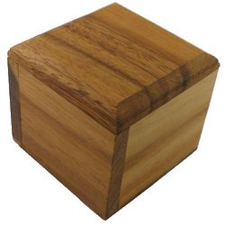 Burr Box Wooden Puzzle Brain Teaser