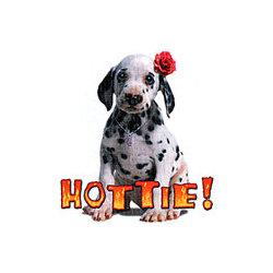 Hottie Dalmatian T-Shirt