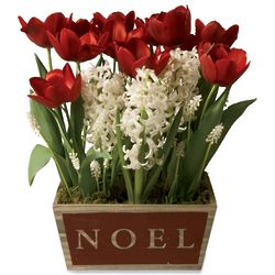Red and White Noel 23-Bulb Garden in Wooden Planter